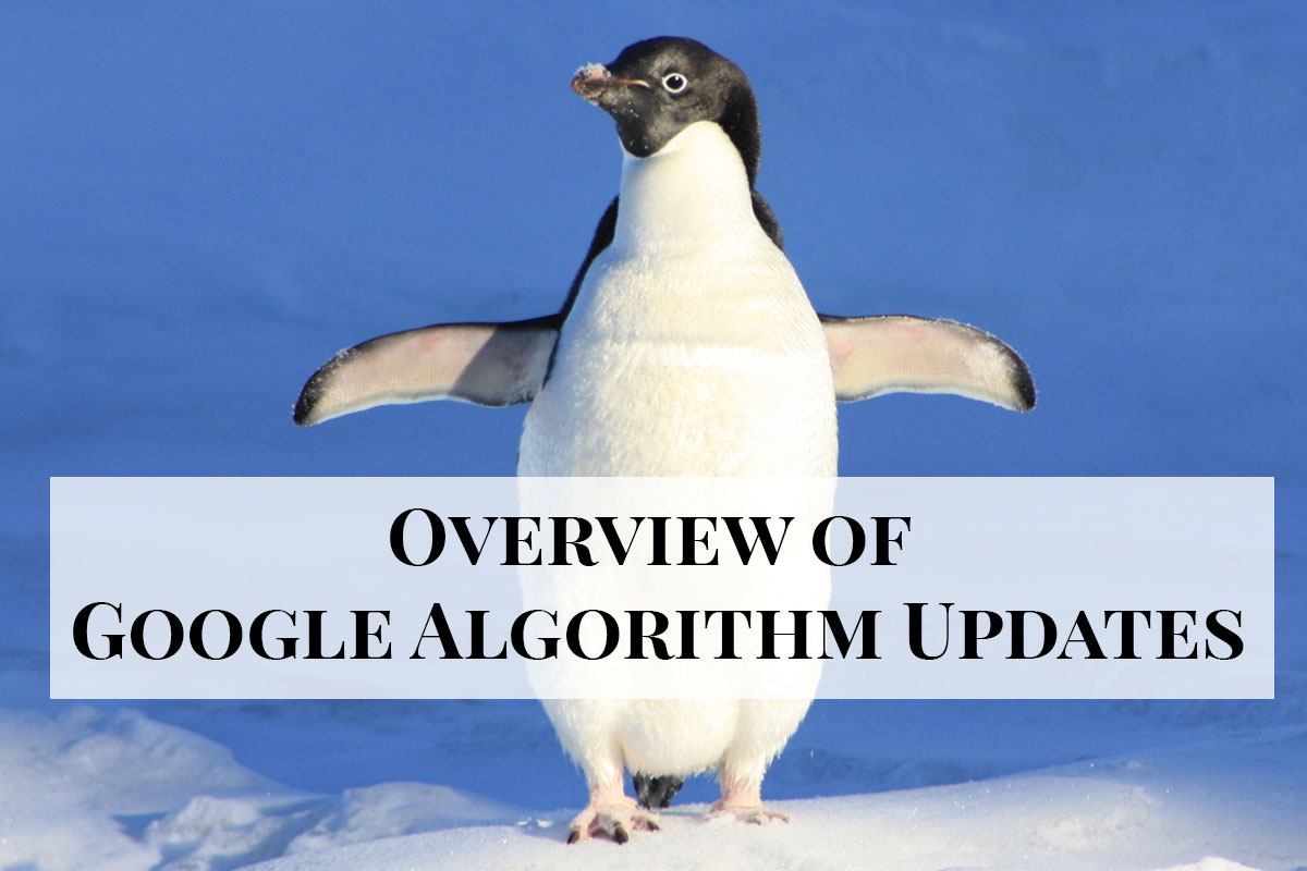 Overview of Google Algorithm Updates