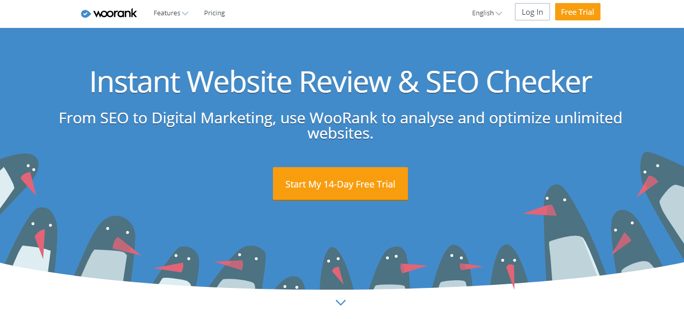 Woorank for SEO Audits