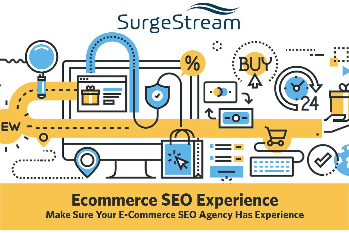 E-Commerce Agency SEO Experience