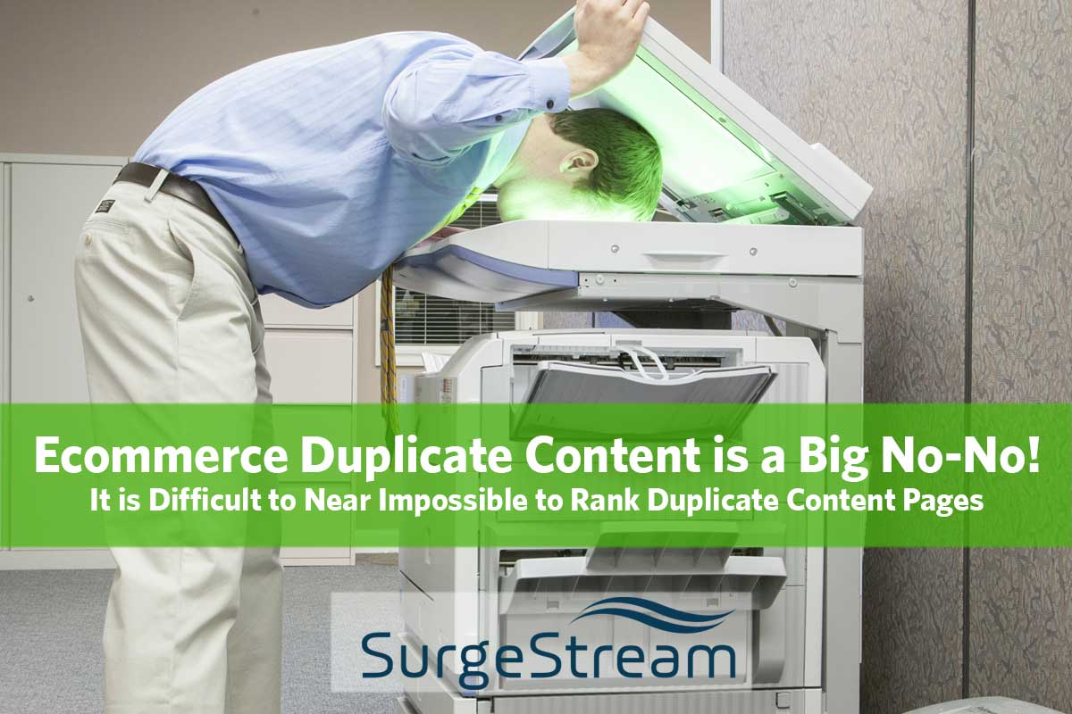 Ecommerce Duplicate Content