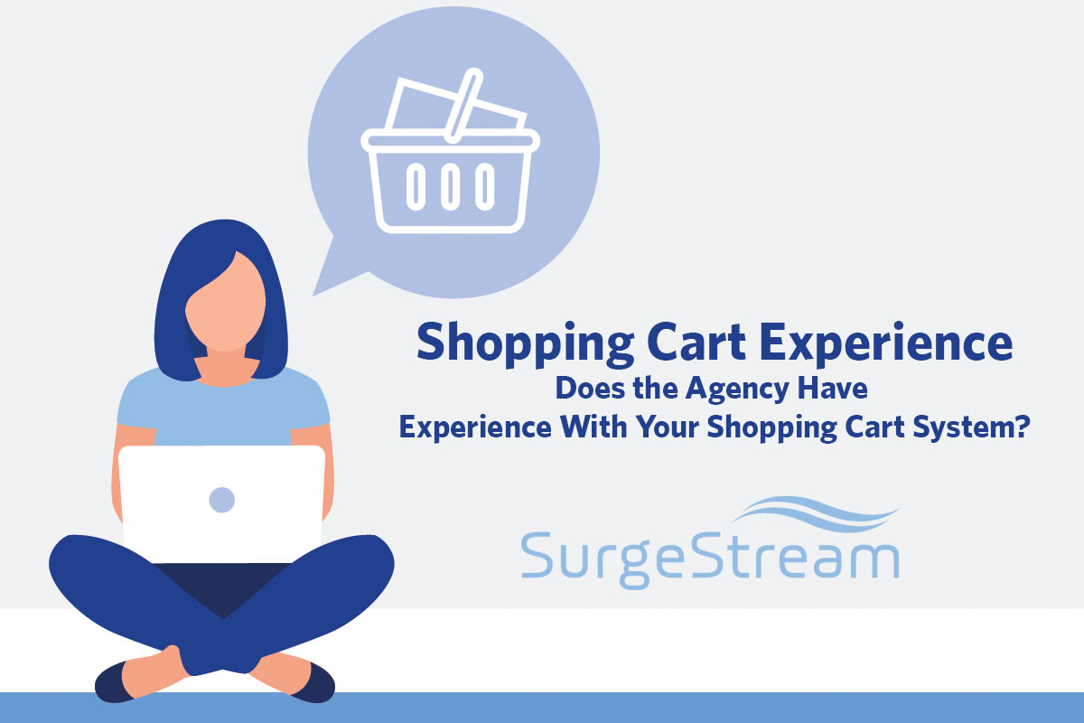 Does the Ecommerce Agency Have Shopping Cart Experience